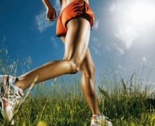 Antibióticos y el ejercicio